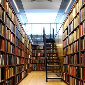 Библиотеки Озинок